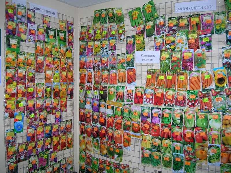 Покупка семян в садовом магазине, надписи на пакетиках, дельные советы