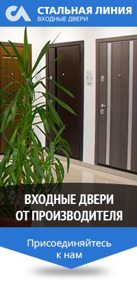 входная дверь до 25000 рублей