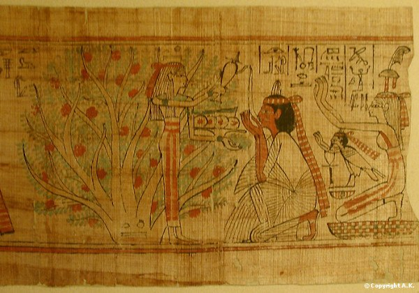 papyrus of ani The papyrus of ani is a papyrus manuscript with cursive hieroglyphs and color illustrations created c 1250 bce, in the 19th dynasty of the new kingdom of ancient egypt.