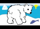 Мультфильмы для детей Познавашки Развивающие мультики Серия о Медведях