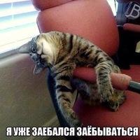 Ткачук Дмитрий