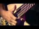 Richard Bona, Mark King,Alain Caron,John Peña Bass solo live