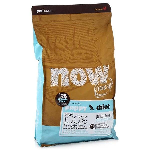 Корм сухой now natural holistic для щенков крупных пород, беззерновой (с индейкой, уткой и овощами) 5,44 кг