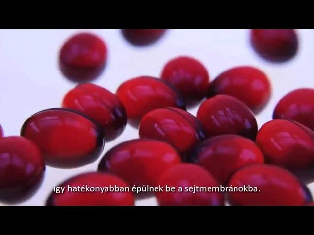 TIENS Krill olaj film - magyar felirattal