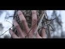 Diane Cluck Sara Official Video