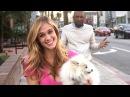 Hot Girl Dog Thief Prank