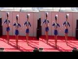 Гусары 3D ( шоу-балет,девушки)