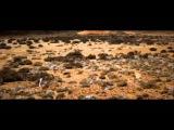 Pendulum - The Island - Pt. I (Dawn) (Official Video)