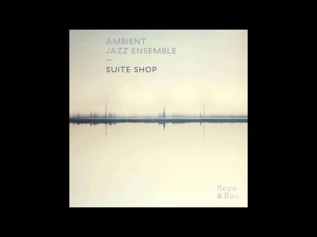 Ambient Jazz Ensemble AJE Vibration