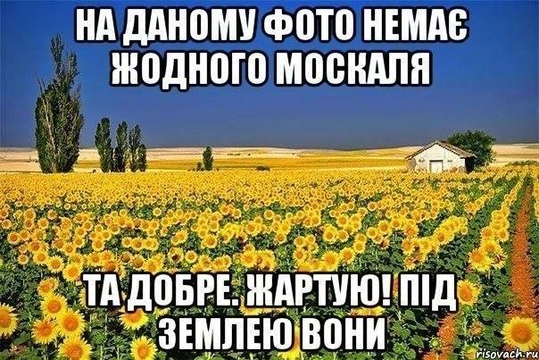 В Госдуме РФ обвинили Касьянова в сепаратизме из-за его позиции по Крыму - Цензор.НЕТ 9342