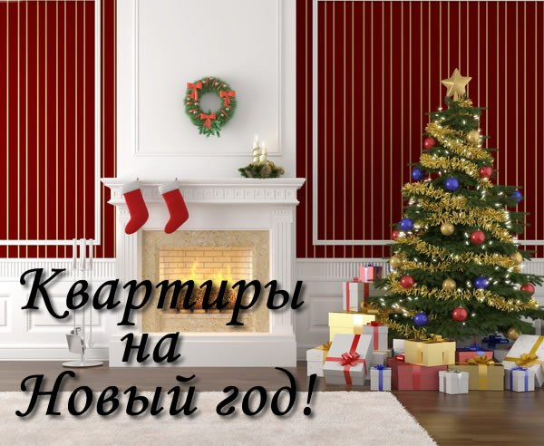 Ищу квартиру на новый год!?