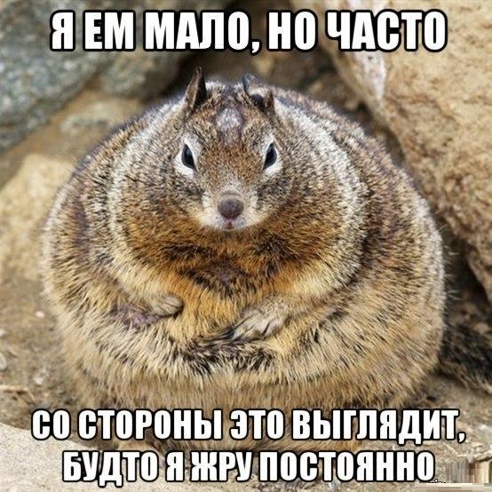 https://pp.vk.me/c623124/v623124880/303cc/IDzABE2_v_E.jpg