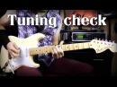 Fender Yngwie Malmsteen TUNING TEST VIBRATO RAPING