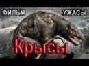 Фильм ужасов Крысы полностью смотреть ужасы онлайн