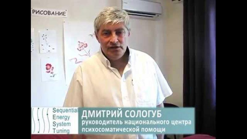Отзыв Дмитрия Салогуба SEST 1 Базовый уровень Краснодар 2015