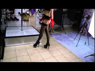 Pleaser Stardust Heels Stockings at Shoes Of Hollywood