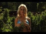 How to Grow Marijuana Outdoors Instructional Video Series.