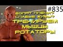 Болят плечи Слабые жимы Тренируем мышцы ротаторы