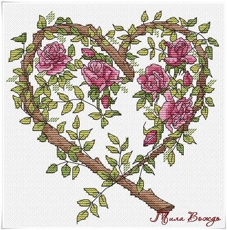 Роза... плетистая, нежная