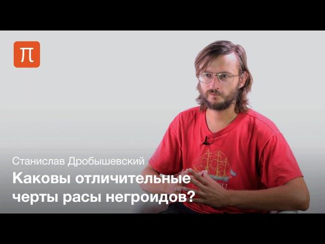 Негроиды — Станислав Дробышевский