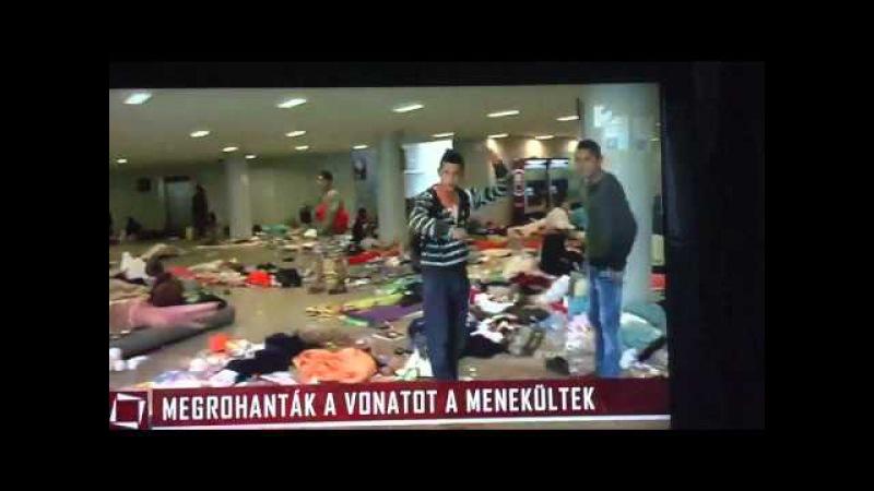 Tények 09.05.Egy szegény migráns üzenete a MAGYAROKNAK