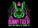 Sharam Jey, Chemical Surf Illusionize - Bass (Bunny Tiger Selection Vol. 5)