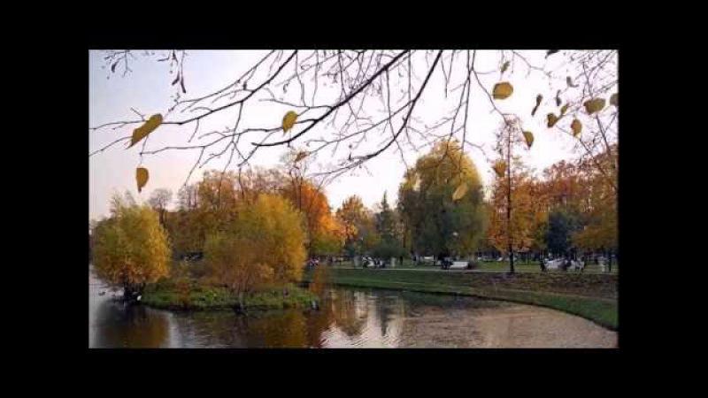 Воспоминание о школе - Александр Дольский