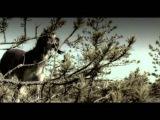 Antiloop - Only U