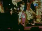 100 лучших клипов года (MTV, 1 января 2003) 56 место. Paul Oakenfold - Starry Eyed Surprise