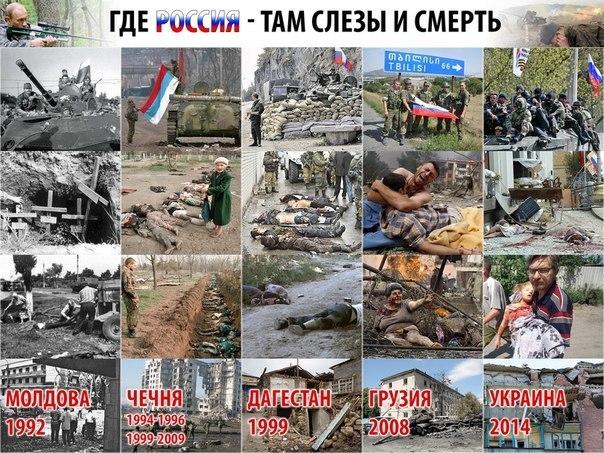 Законы по Донбассу нужно согласовать с террористами, - Путин - Цензор.НЕТ 479