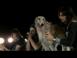 Pink Floyd - Mademoiselle Nobs (Live at Pompeii - 1972)