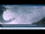 Горячие новости Египетская акула откусила ногу немецкому туристу