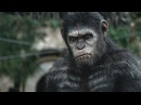 VFX of Dawn of the Planet of the Apes