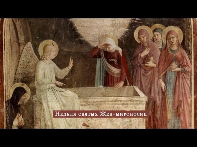 Программа № 30. Неделя святых Жен-мироносиц. 26 апреля 2015 года.