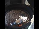 """Бар Берлога on Instagram Каждое утро на веранде нашего ресторана мы готовим блюда на мангале и барбекю как говорится с дымком 🔥🍆🐟🍖♨️ берлогабар berlogabar…"""""""