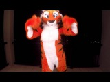 Sugar (Furry Music Video)