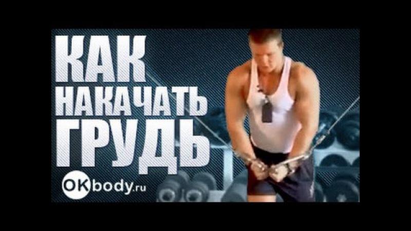 как накачать грудь- упраженения для мышц груди