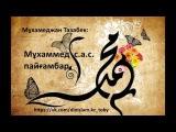 М.Тазабек: