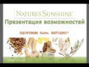Презентация возможностей НСП (NSP) - Алексей Зайцев