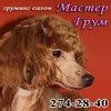 Мастер Грум - зоомагазин и груминг-салон Алматы
