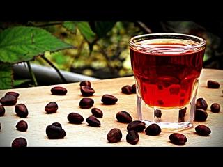 Кедровка, рецепт настойки на кедровых орехах