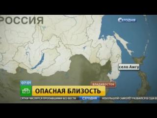 В Приморье застрелили напавшего на детей медведя