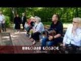 Песни и пляски под гармонь в парке Кузьминки