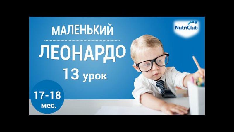 Интеллектуальное развитие ребенка 1,5 лет по методике Маленький Леонардо. Урок 13