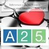 А25: разработка сайтов и интернет-магазинов, PR