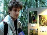 Редкие виды орхидей показали в Петербурге