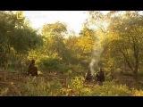 Дикая Африка.Жизнь племени Покот.Документальный фильм