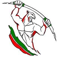 Логотип Street Workout << Казань >> Официальная группа