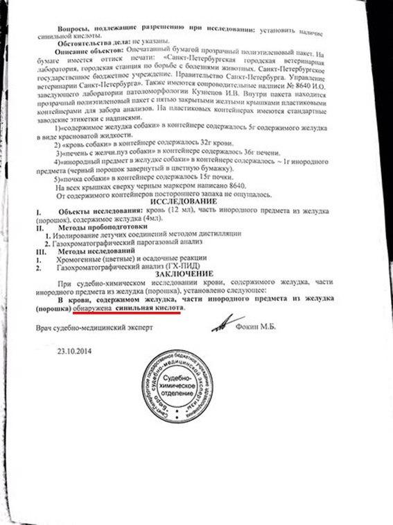 Акция Догхантеров 25.01.14 OjsyW4R58AU