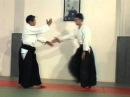 Saito Sensei - Gyaku Hanmi Katatedori (2nd Form) aikido